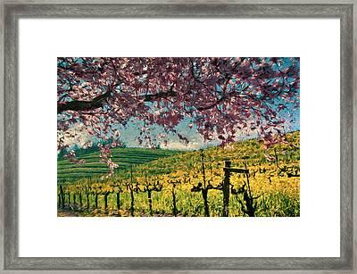 Springtime In Pink Framed Print by John K Woodruff
