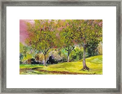 Springtime In Sawgrass Park Framed Print by Gary Debroekert