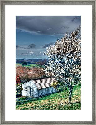 Springtime In The Blue Ridge Mountains I Framed Print by Dan Carmichael