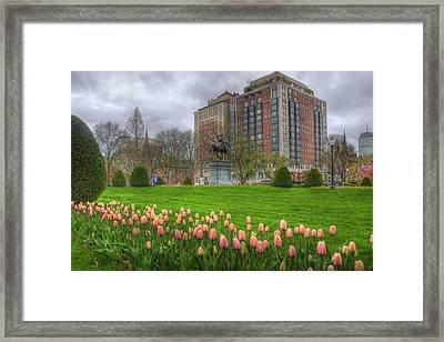 Springtime In The Public Garden - Boston Framed Print by Joann Vitali