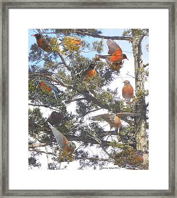 Springtime Moments- Birds Of A Feather Framed Print by Patricia Keller