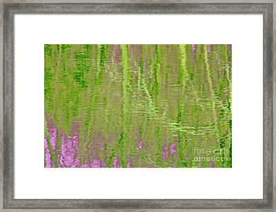 Springtime Reflections Framed Print by Cindy Lee Longhini