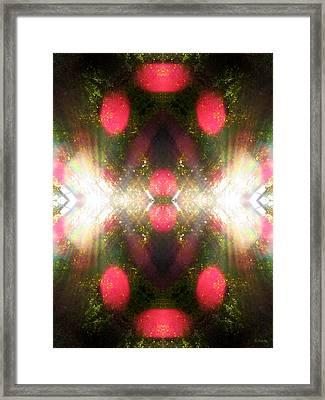 Spritual Gateway Framed Print by Shawna Rowe