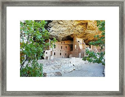 Spruce Tree House Framed Print by Michael Szoenyi