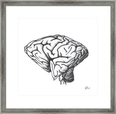 Square Brain In A Round Skull Framed Print by Del Gaizo