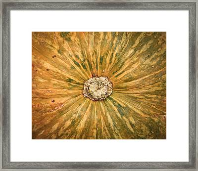 Squash Framed Print by Tom Gowanlock