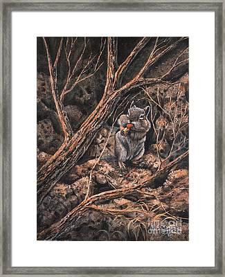 Squirrel-ly Framed Print by Ricardo Chavez-Mendez