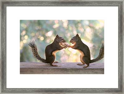 Squirrels That Share Framed Print by Peggy Collins