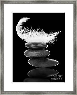 Stability Framed Print by Shawn Hempel