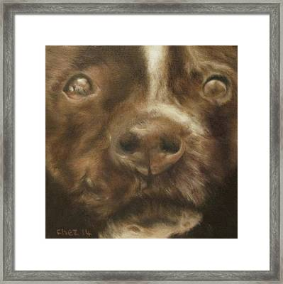 Staffie Framed Print by Cherise Foster