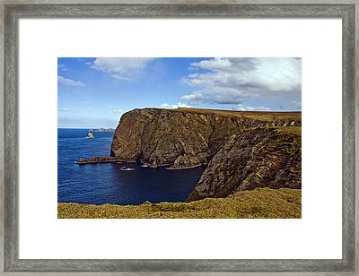 Stags Of Broadhaven Framed Print by Tony Reddington
