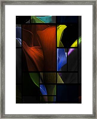 Stained Glass Calla Lily Framed Print by Judy  Johnson