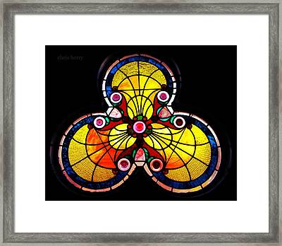 Stained Glass  Framed Print by Chris Berry