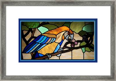 Stained Glass Parrot Window Framed Print by Thomas Woolworth