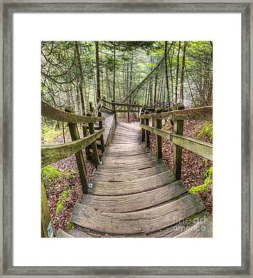 Stairs To Miners Falls Framed Print by Twenty Two North Photography