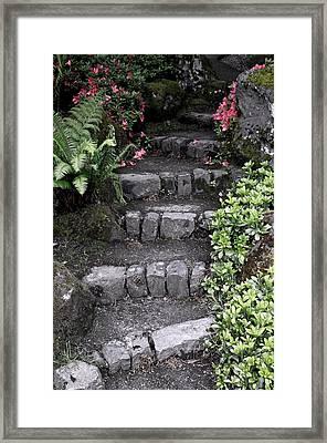 Stairway Path To Gardens Framed Print by Athena Mckinzie