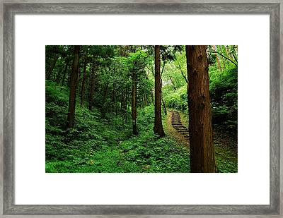 Stairway To Healing Framed Print by Aaron S Bedell
