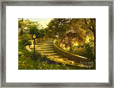 Stairway To Nirvana Framed Print by Madeline Ellis