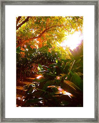 Stairway To The Top Framed Print by Amy Vangsgard