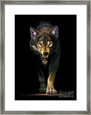 Stalking Wolf Framed Print by MGL Studio - Chris Hiett
