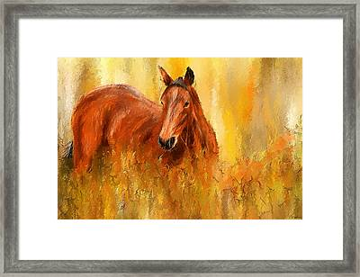 Stallion In Autumn - Bay Horse Paintings Framed Print by Lourry Legarde
