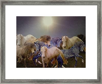 Stallions On Stage As Vivaldi's Spring Plays Framed Print by Patricia Keller