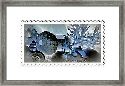 Stamp Seashells In Blue  Framed Print by Danielle  Parent