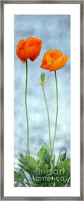Stand By Me Framed Print by Priska Wettstein