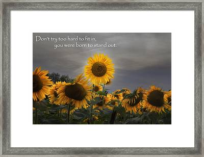 Stand Out Framed Print by Bill Wakeley