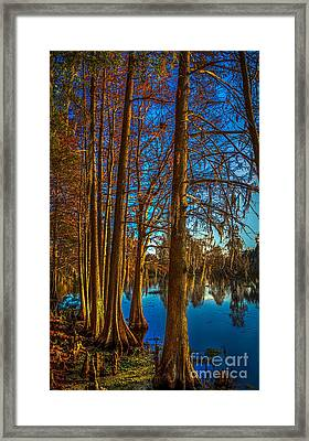 Stand Tall Framed Print by Marvin Spates