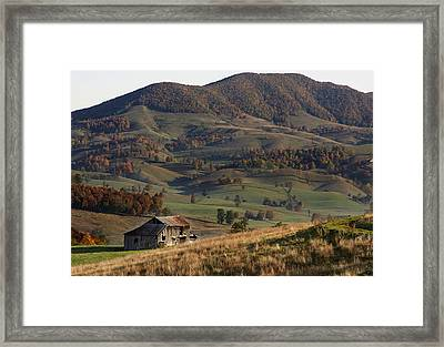 Standing Alone Framed Print by David Lester
