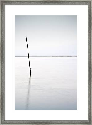 Standing Alone Framed Print by Jorge Maia