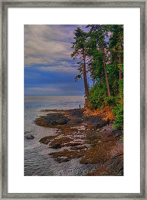 Standing By The Sea Framed Print by Greg Norrell