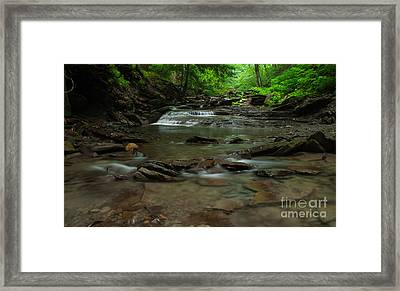 Standing In The Stream Framed Print by Steve Clough