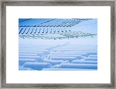 Standing Room Only - Featured 3 Framed Print by Alexander Senin