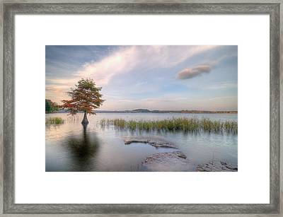 Standing Tall Against All Framed Print by Franklyn Cabahug