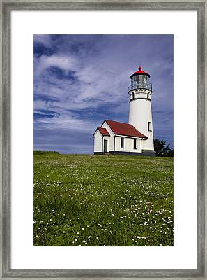 Standing Tall Framed Print by Andrew Soundarajan