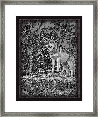Standing Tall Framed Print by Ernie Echols