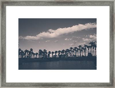 Standing Tall Framed Print by Laurie Search