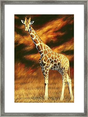 Standing Tall Framed Print by Lucie Bilodeau
