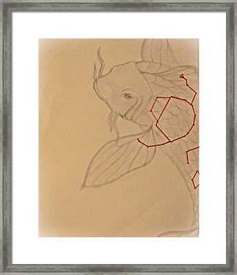 Star Fish Framed Print by Kaleigh Higgs