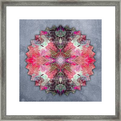 Star Mandala B Framed Print by Filippo B