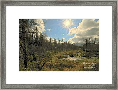 Star Mountain Framed Print by Catherine Reusch  Daley
