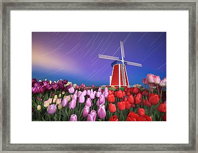 Star Trails Windmill And Tulips Framed Print by William Lee