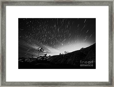 Star Trails And Trees Mono Framed Print by Charline Xia
