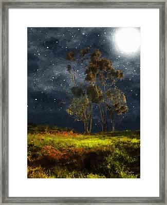 Starfield Framed Print by RC deWinter