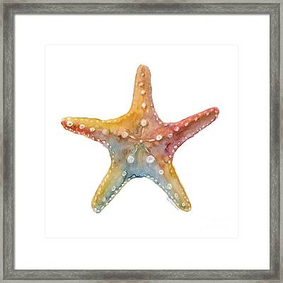 Starfish Framed Print by Amy Kirkpatrick