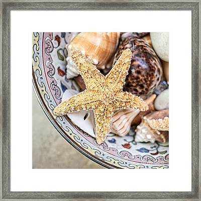 Starfish And Seashells Framed Print by Edward Fielding