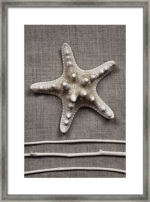 Starfish And Sticks Framed Print by Carol Leigh