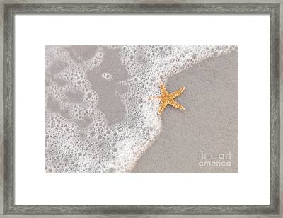 Starfish In The Surf Framed Print by Diane Macdonald